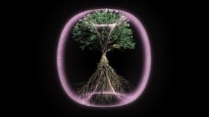 Torus_Tree