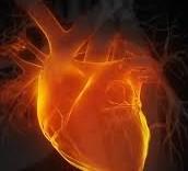 статья по психологии, путь сердца
