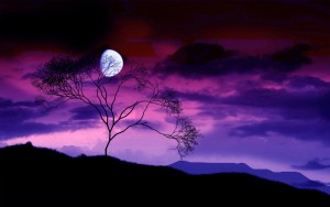Purple-Moon-Wallpapers-65