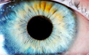 eye_2035603c