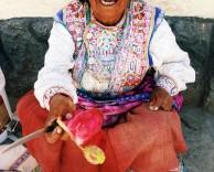 Бабушка, продающая кактусы
