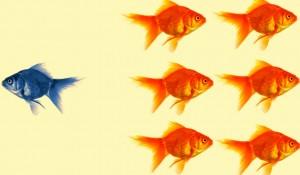 что мешает достичь самореализации -статья по психологии