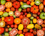 рецепт салата из томатов с пармезаном