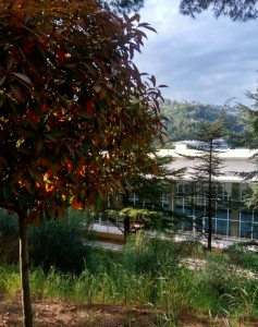 Крытый круглогодичный бассейн на территории санатория Айвазовское