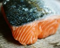 salmon-3139387_1280